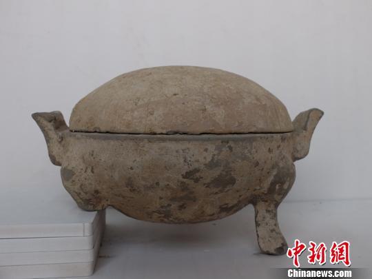 安徽界首市民收集到汉唐文物上交博物馆